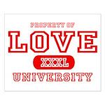 Love University Property Small Poster