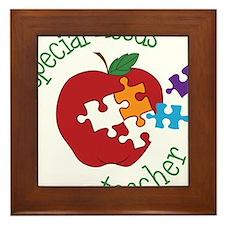 Special Needs Teacher Framed Tile