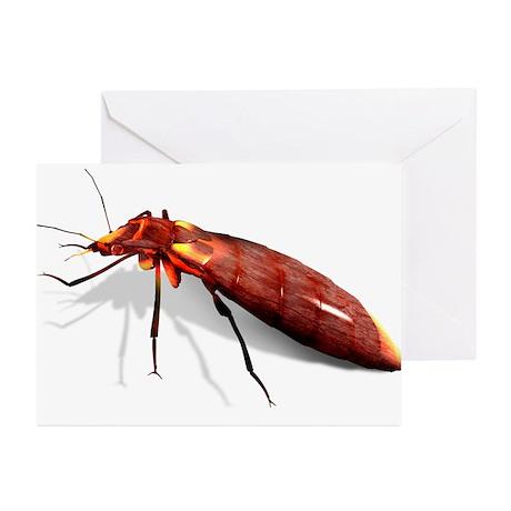 Bed bug, artwork - Greeting Cards (Pk of 10)