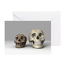 Homo floresiensis skull - Greeting Cards (Pk of 10