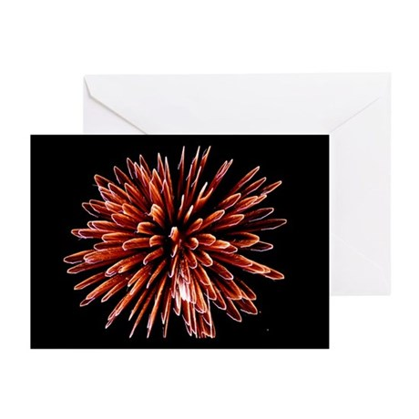 Fireworks - Greeting Cards (Pk of 10)