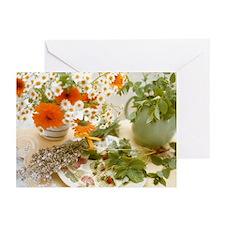 Medicinal plants - Greeting Cards (Pk of 10)