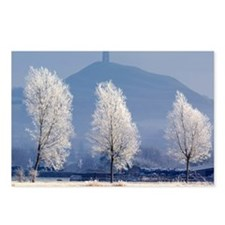 Frost-covered trees and Glastonbury Tor - Postcard