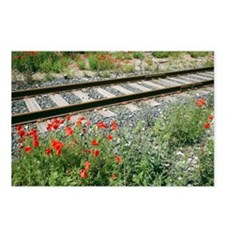 Poppies beside a rail track - Postcards (Pk of 8)