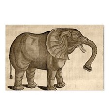 1607 Elephant by Topsell age toned - Postcards (Pk