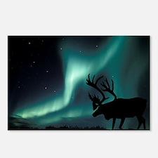 Aurora borealis and caribou - Postcards (Pk of 8)