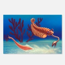 Cambrian animals, artwork - Postcards (Pk of 8)
