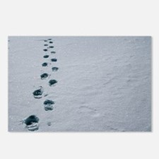 Footprints in snow - Postcards (Pk of 8)