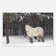 Highland pony - Postcards (Pk of 8)
