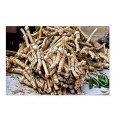 Horseradish roots - Postcards (Pk of 8)