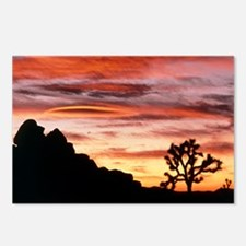 Lenticular cloud, Joshua Tree NM, sunset - Postcar
