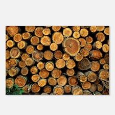 Logs - Postcards (Pk of 8)