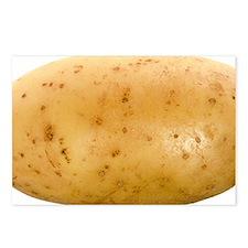 Potato - Postcards (Pk of 8)