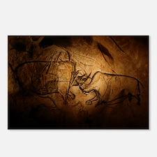 Stone-age cave paintings, Chauvet, France - Postca