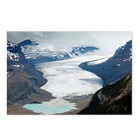 The Saskatchewan Glacier, Canada - Postcards (Pk o