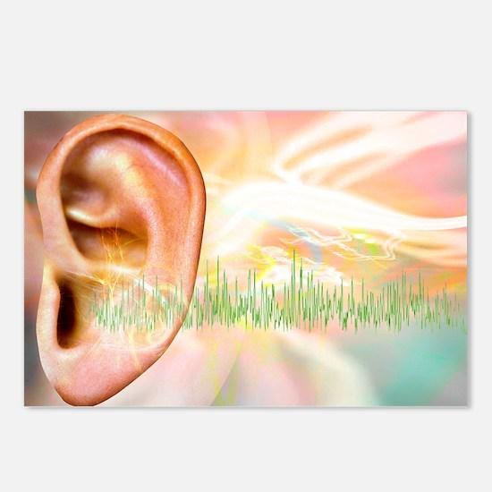 Tinnitus, conceptual artwork - Postcards (Pk of 8)