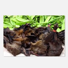 Bats on sale at a market - Postcards (Pk of 8)