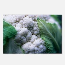 Cauliflower - Postcards (Pk of 8)