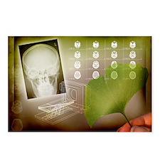 Ginkgo in medicine - Postcards (Pk of 8)