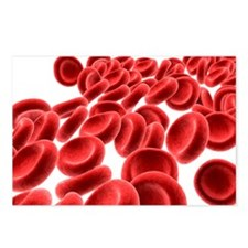 Red blood cells - Postcards (Pk of 8)