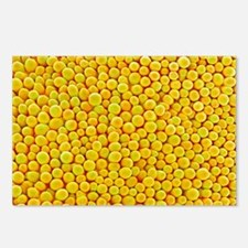 Rape flower petal, SEM - Postcards (Pk of 8)