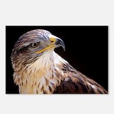 Ferruginous buzzard - Postcards (Pk of 8)