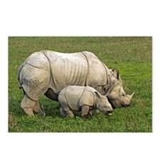 Indian rhinoceroses - Postcards (Pk of 8)