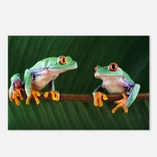 Red-eyed tree frogs - Postcards (Pk of 8)