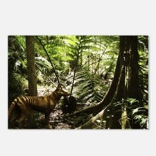 Tasmanian wolf in forest - Postcards (Pk of 8)