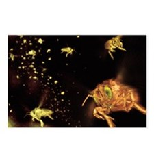 Swarm of bees - Postcards (Pk of 8)