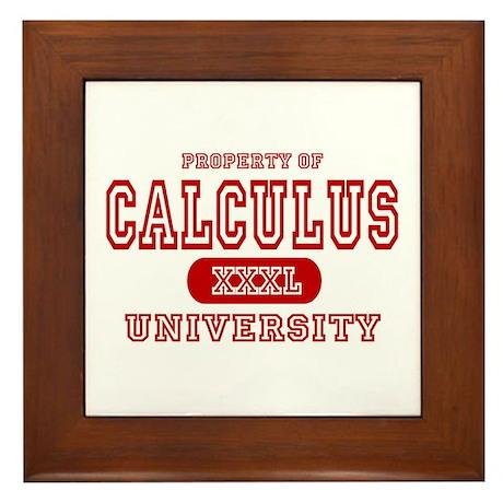 Calculus University Framed Tile