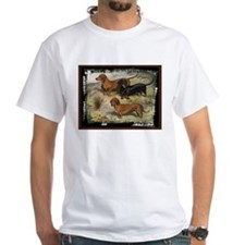 Antique Dachshund Doxie Shirt