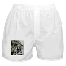 Oh My Grimm Boxer Shorts