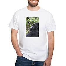 IMG_6502.JPG T-Shirt