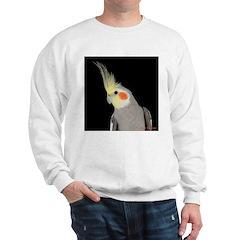 Cockatiel 4 Steve Duncan Sweatshirt