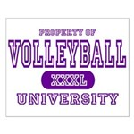 Volleyball University Small Poster