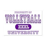 Volleyball University Mini Poster Print
