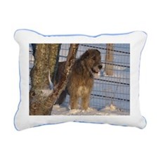 Handsome Wolfhound and Snow Rectangular C