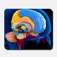 Human brain anatomy, artwork - Mousepad