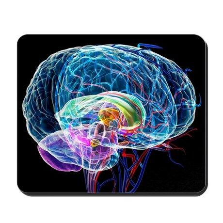 Brain anatomy, artwork - Mousepad