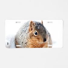 Winter Squirrel Aluminum License Plate