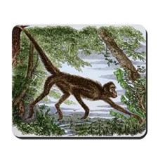 Spider monkey, historical artwork - Mousepad