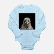 European owl chick - Long Sleeve Infant Bodysuit