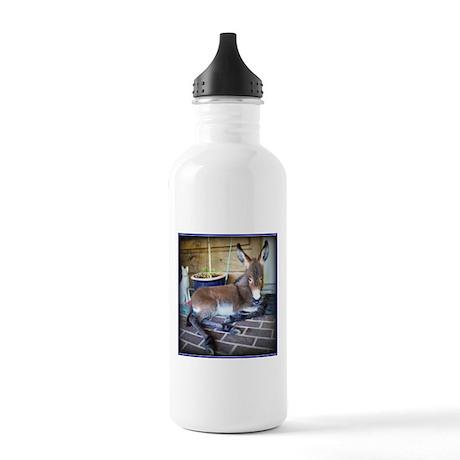Cute Little Ass Stainless Water Bottle 1.0L