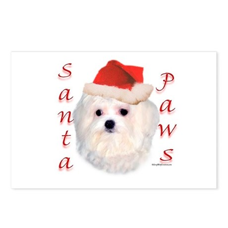 Santa Paws Maltese Postcards (Package of 8)