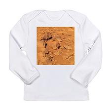 Toltecs, volcanic rocks, Mars - Long Sleeve Infant