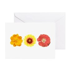 Three Flowers - Warm Colors Greeting Cards (Pk of