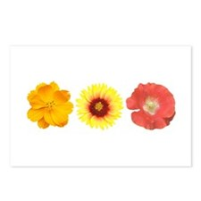 Three Flowers - Warm Colors Postcards (Package of