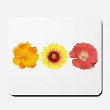 Three Flowers - Warm Colors Mousepad