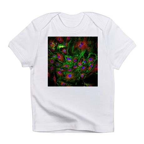 Cell structure - Infant T-Shirt